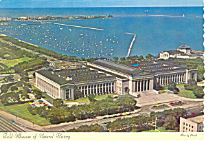 Field Museum Of Natural History Chicago Il Postcard Cs2242