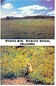 Wichita National Wildlife Refuge, Oklahoma Postcard (Image1)