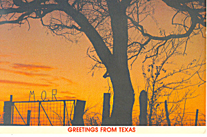 Sunset, Waco, Texas Postcard (Image1)