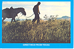 Texas Cowboy and Horse Postcard (Image1)