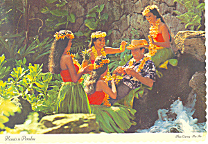 Hawaii is Paradise Postcard cs2446 (Image1)