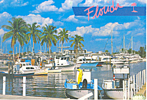 Marina Florida Postcard Cs2478
