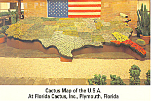 Florida Cactus Inc Cactus USA Map Postcard cs2482 (Image1)
