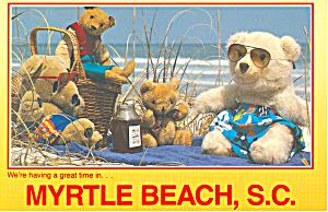 Teddy Bears on Myrtle Beach South Carolina cs2684 (Image1)