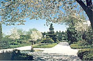 Ladew Topiary Gardens Monkton MD Postcard cs3188 (Image1)