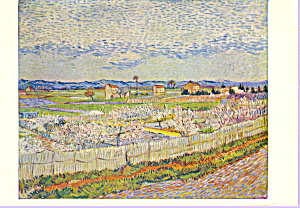 The Orchard Vincent Van Gogh Postcard cs3334 (Image1)
