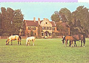 Middleton Place South Carolina cs3847 (Image1)
