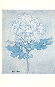 Blue Chrysanthemum Piet  Mondrian Postcard cs3917 (Image1)