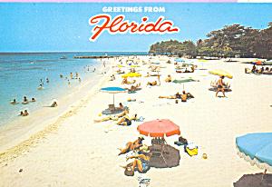 Beach Scene Florida cs4075 (Image1)