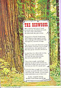 California Redwoods Words by Joseph B Strauss cs4340 (Image1)