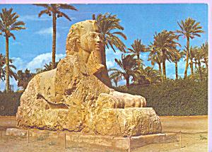 The Sphinx of Sakkara Giza cs4434 (Image1)