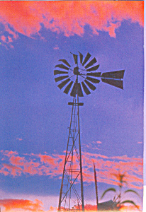 Windmill Postcard cs4625 (Image1)