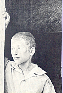 Photo of Young Boy Postcard cs4682 (Image1)