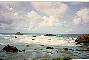 Oregon Coast (Image1)