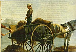 Seaweed Gathering Elizabeth Coffin Postcard cs4912 (Image1)