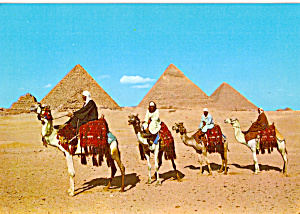 Arab Camelriders in front of Pyramids Egypt cs5256 (Image1)