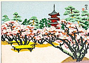 Cherry Blossoms at Ninnaji Temple Kyoto Japan cs5281 (Image1)
