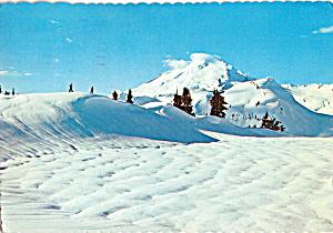 Mt Baker Washington cs5366 (Image1)