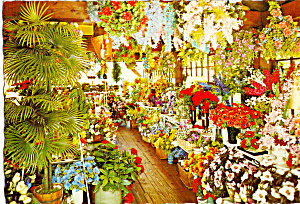 Garden Shop at Historic Smithville Inn NJ Postcard cs5422 (Image1)