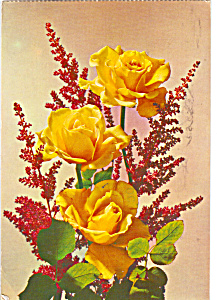 Still Life of Yellow Roses (Image1)