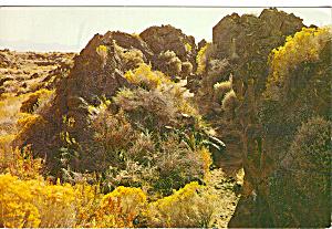 Lava Beds National Monument CA cs5555 (Image1)