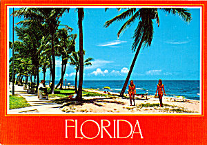 Beach Scene Sun Coast Florida cs5651 (Image1)