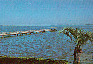 Moosehaven City Of Contentment Fl Postcard Cs5924