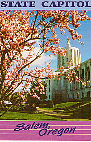Cherry Blossoms and the Oregon State Capitol (Image1)