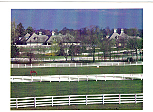 Kentucky Horse Park KY Postcard cs6322 (Image1)