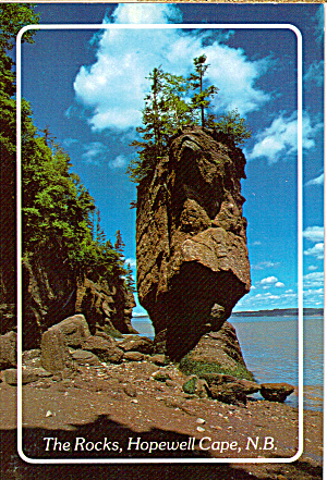 The Flower Pot Rocks,hopewell Cape,new Brunswick