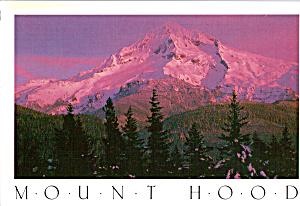 Mt Hood Oregon Postcard cs6468 (Image1)