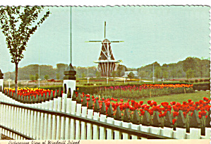 Flower Gardens,Windmill Island, Holland Michigan (Image1)