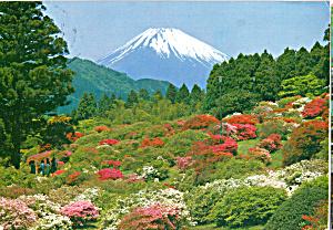 Mt Fuji in Early Spring Japan cs6605 (Image1)