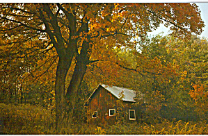 Rustic Seclusion Pocono Mountains Pa Cs6756