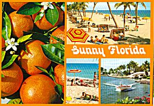 Multi View Postcard of Florida cs6780 (Image1)