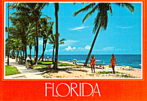 Sand And Sea Florida Postcard Cs6782