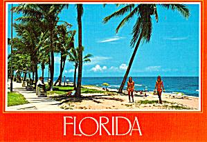 Sand and Sea Florida Postcard cs6782 (Image1)