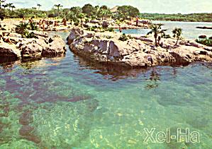 Lagoon at Xel-Ha, Mexico (Image1)