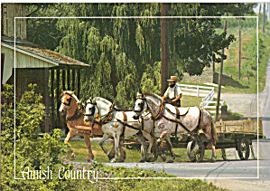 Amish Horse Drawn Farm Wagon Postcard cs6928 (Image1)