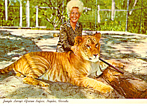 World Famous Tiglon at Jungle Larrys Safari Park (Image1)