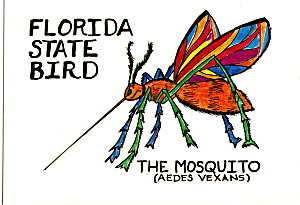florida state bird the mosquito cs6954 image1
