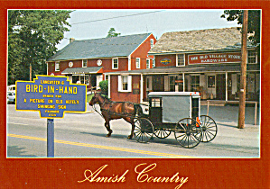Amish Carriage in Bird in Hand, PA Postcard cs6974 (Image1)