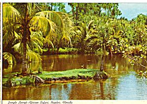 Jungle Larry s African Safari Naples Florida cs6976 (Image1)