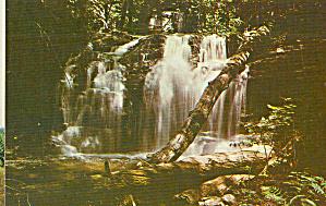 Wyandot Falls,Ricketts Glen State Park, Pennsylvania (Image1)