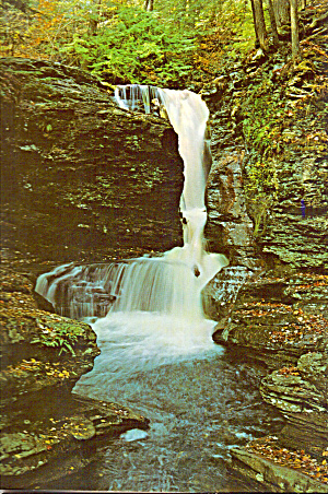 Adams Falls,Ricketts Glen State Park, Pennsylvania (Image1)