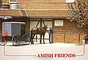 Amish Buggy Postcard cs7017 (Image1)