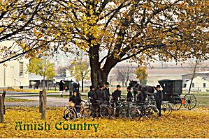 Amish Men With Buggies and Bicycles Postcard cs7027 (Image1)