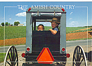 Amish Children in Buggy Postcard cs7028 (Image1)