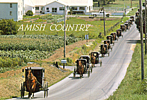Amish Buggys on Road in Funeral Procession cs7037 (Image1)
