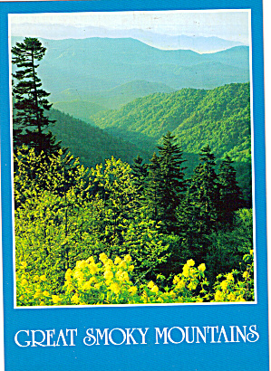 View from Clingmans Dome Highway (Image1)